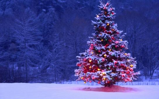 Mikulášská sbírka pro rodiny s dětmi s postižením startuje letos 4. prosince, hledejte dobrovolníky s červenými, speciálně označenými čepicemi